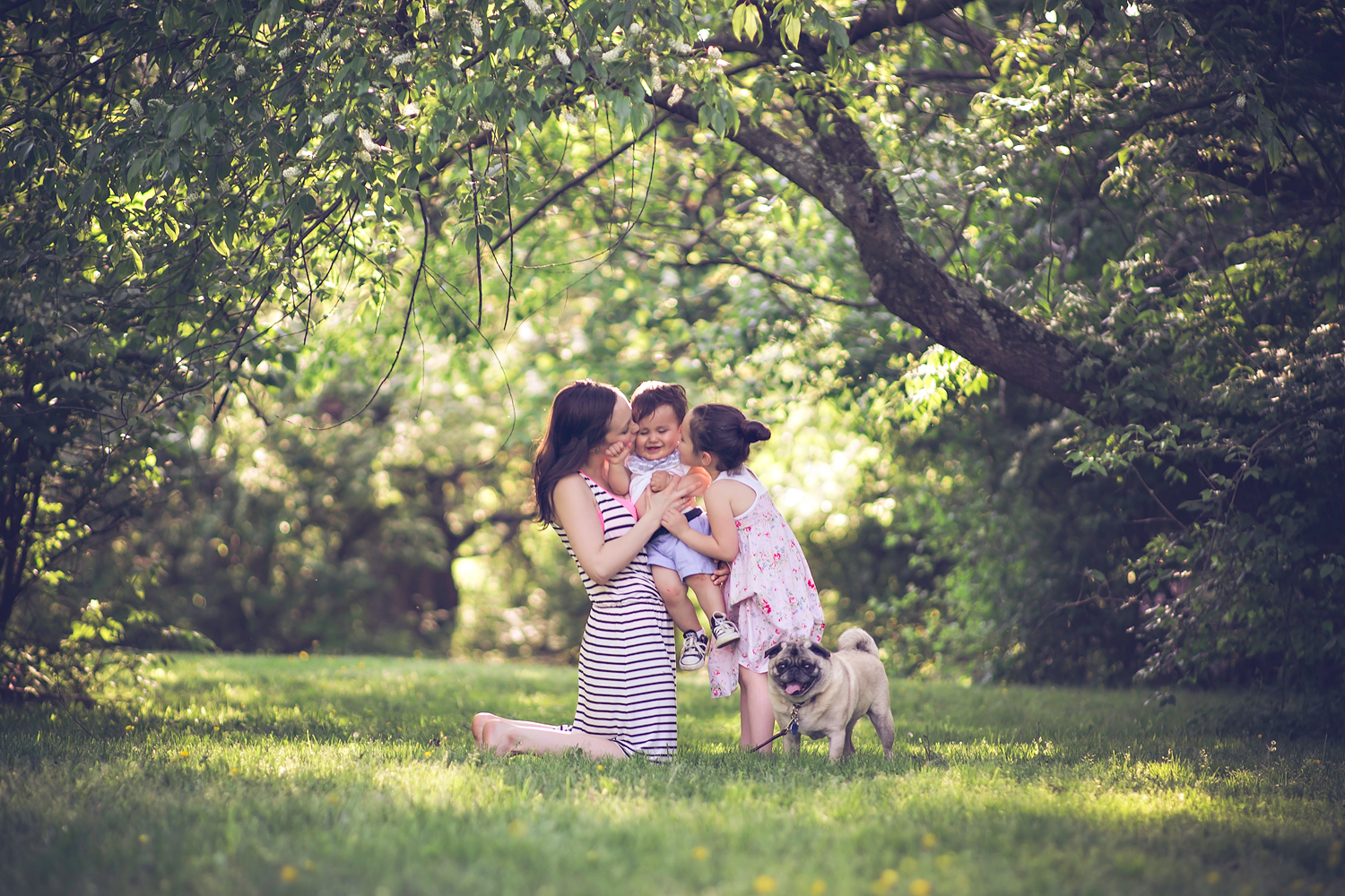 family and baby with pet pug dog | Tonya Teran Photography - Rockville, MD Newborn Baby and Family Photography
