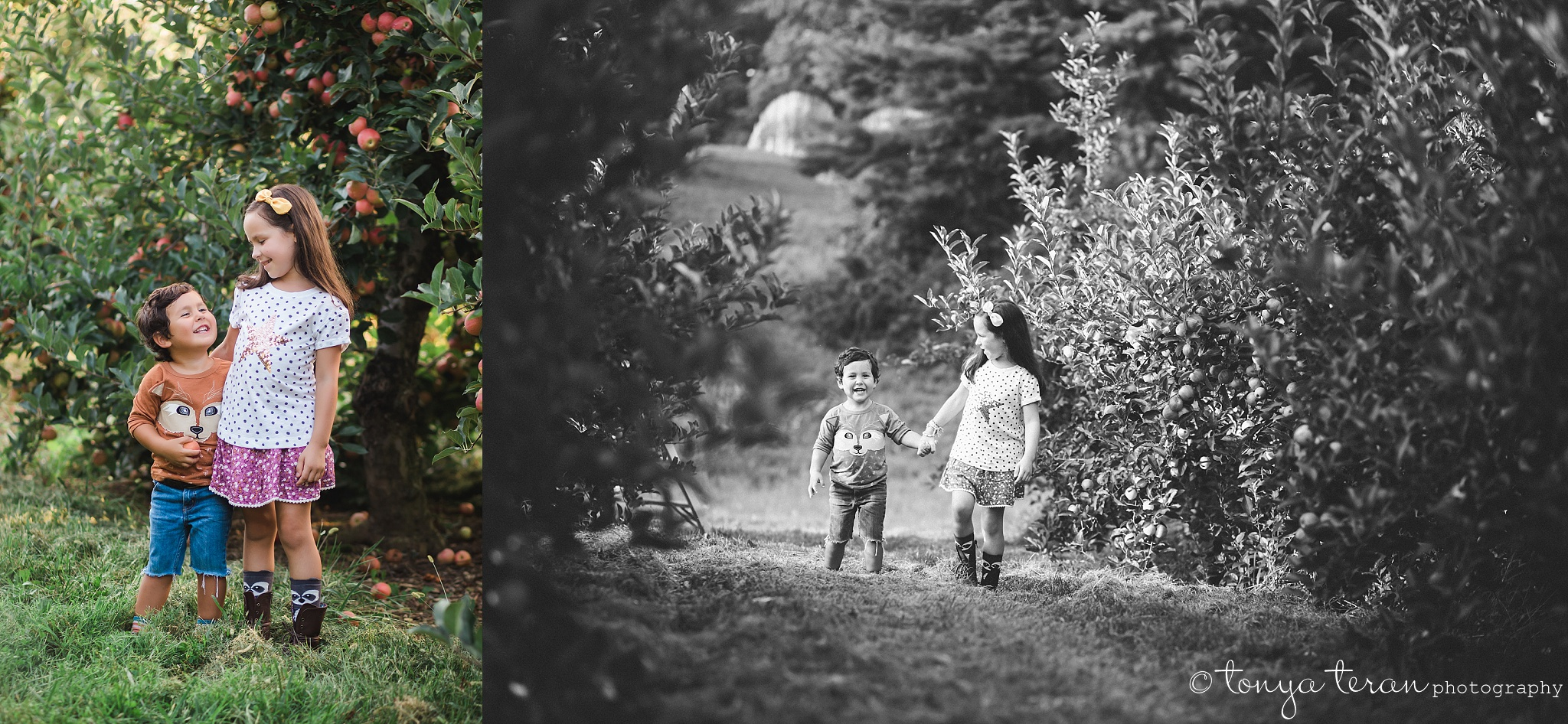 2016 Fall Mini Sessions | Tonya Teran Photography, Germantown, MD Newborn, Baby, and Family Photographer
