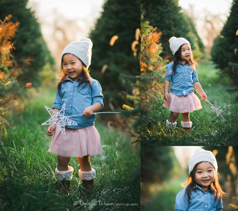 2015 Christmas Tree Farm Mini Sessions | Bethesda, MD Newborn ...