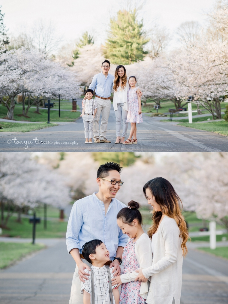 Cherry Blossom Tree Session | Tonya Teran Photography, Potomac, MD Newborn, Baby and Family Photographer