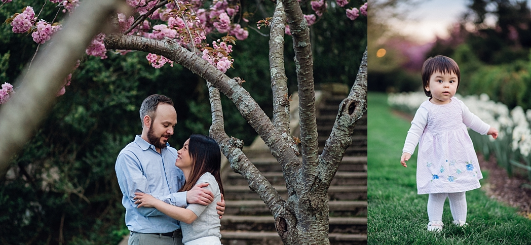 Spring Blossom Tree Session   Bethesda, MD Newborn, Baby and Family Photographer