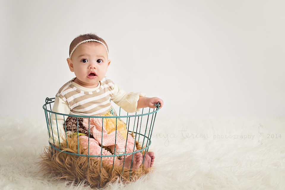 Bethesda, Maryland Newborn Baby and Family Photographer   Tonya Teran Photography