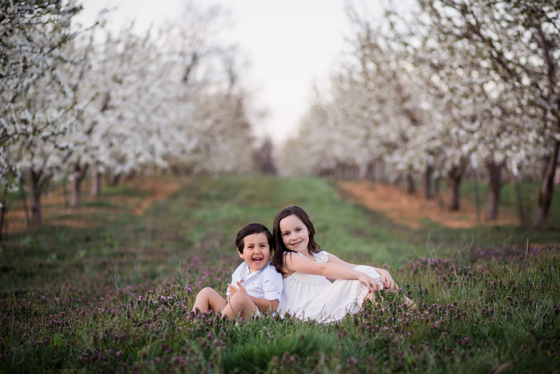 cherry-blossom-locations-md-family-photographer