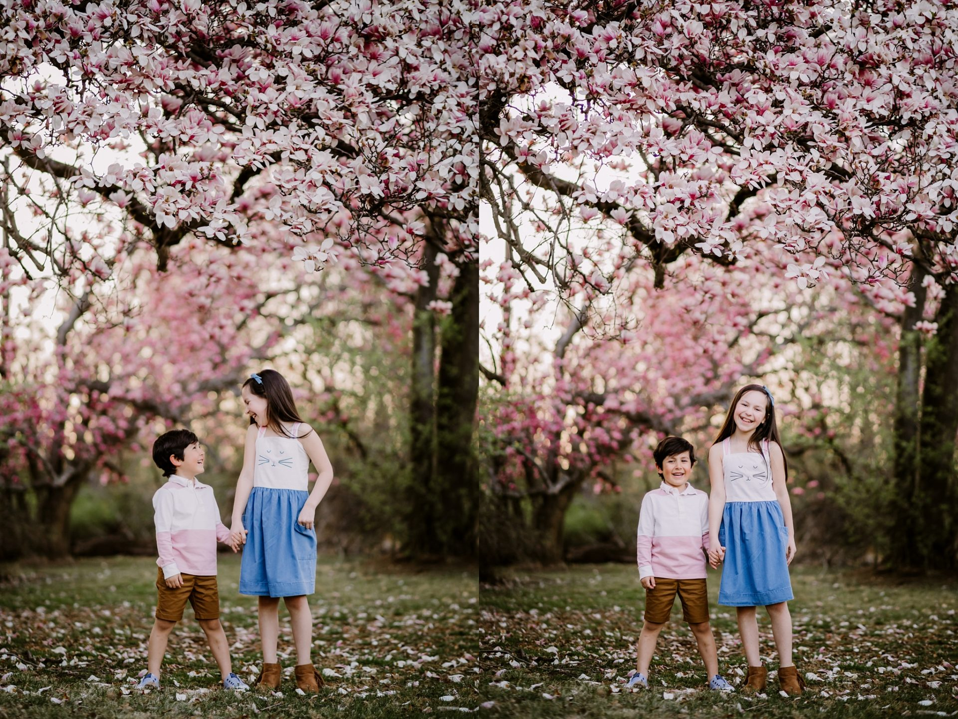 cherry-blossom-locations-dc-family-photographer