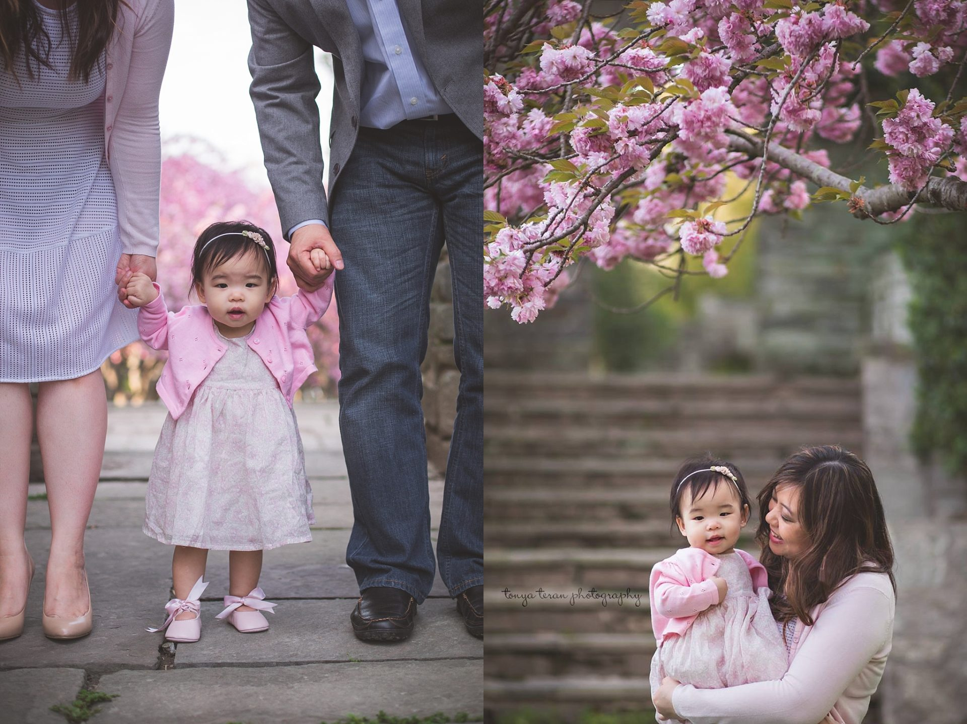 cherry-blossom-locations-dc-family-photographer-glenview-mansion