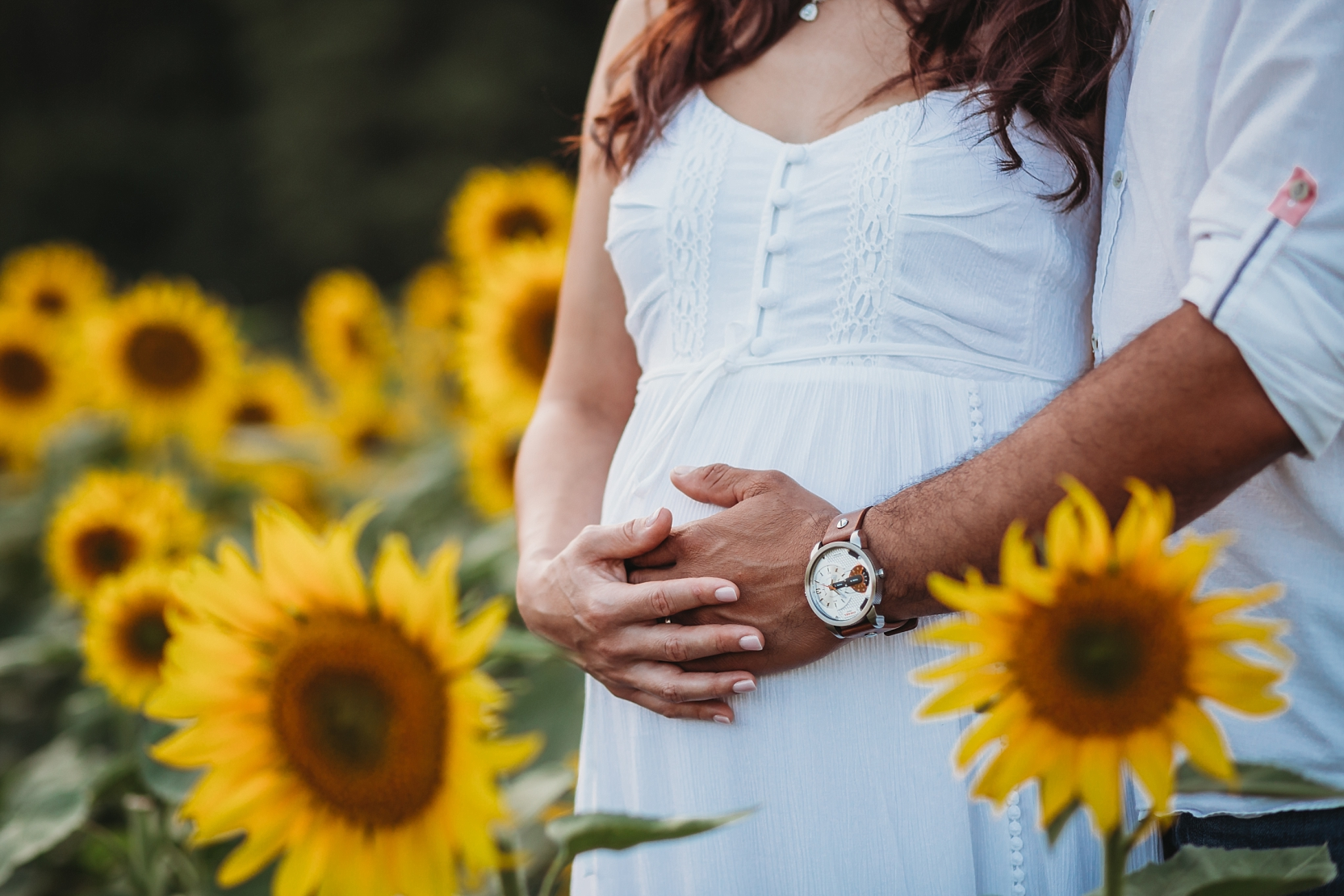 Maryland-sunflower-field-maternity-photographer